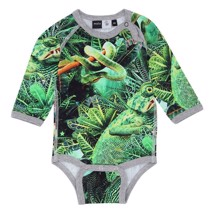Molo body Field - Jungle